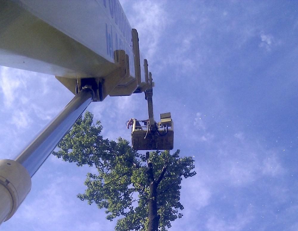 Wycinka drzew z wykorzystaniem maszyny wysokościowej